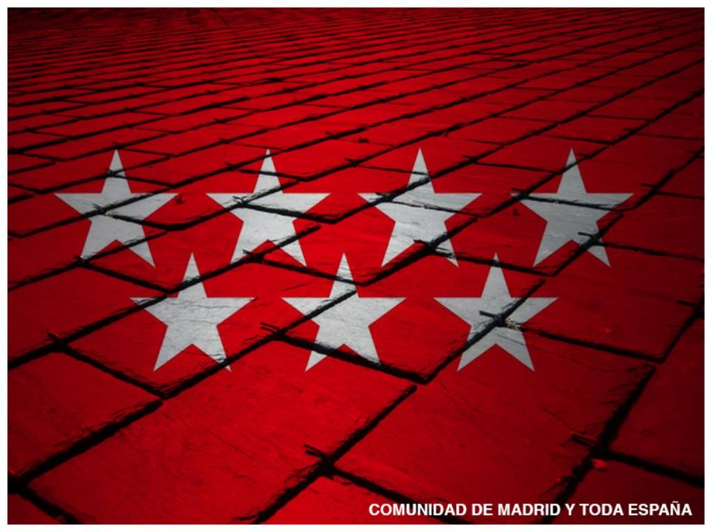 tejados pizarra Madrid reparación